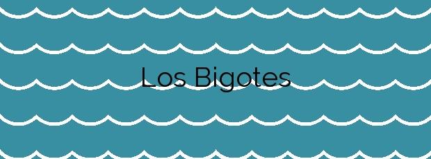 Información de la Playa Los Bigotes en San Bartolomé de Tirajana