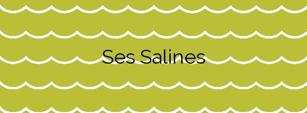 Información de la Playa Ses Salines en Sant Josep de sa Talaia