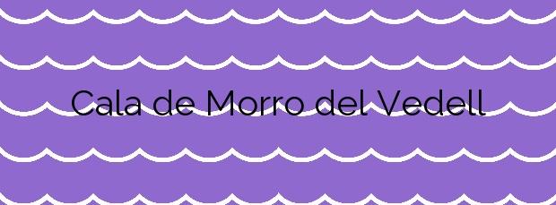 Información de la Cala de Morro del Vedell en Palamós