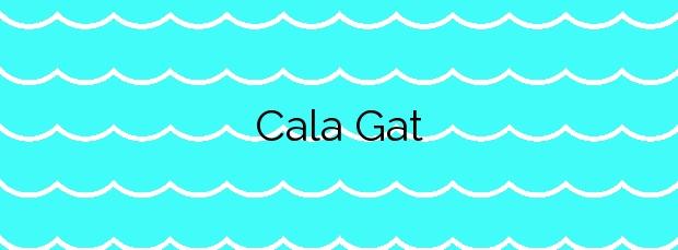 Información de la Cala Gat en Santa Eulalia del Río