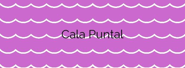 Información de la Cala Puntal en Vinaròs