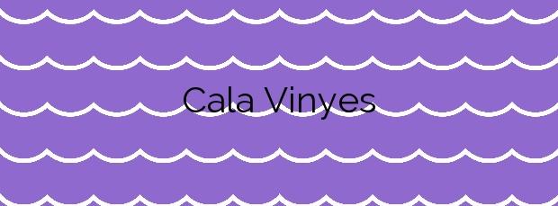 Información de la Cala Vinyes en Calvià