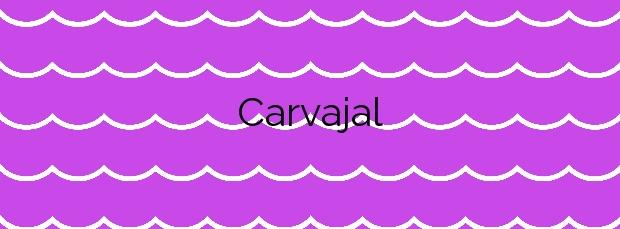 Información de la Playa Carvajal en Benalmádena