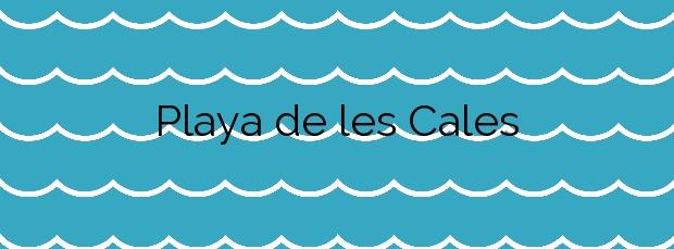 Información de la Playa de les Cales en Vinaròs