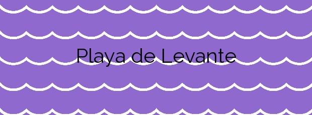 Información de la Playa de Levante en Santa Pola