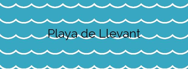 Información de la Playa de Llevant en Formentera