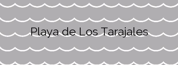 Información de la Playa de Los Tarajales en Arona