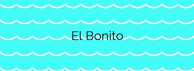 Información de la Playa El Bonito en Arico