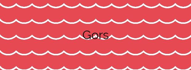 Información de la Playa Gors en Oliva