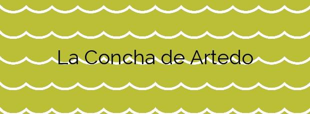 Información de la Playa La Concha de Artedo en Cudillero