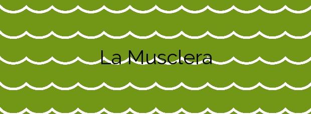 Información de la Playa La Musclera en Arenys de Mar
