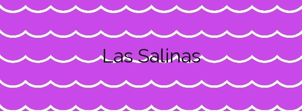 Información de la Playa Las Salinas en Adeje