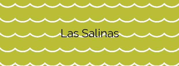 Información de la Playa Las Salinas en Los Alcázares