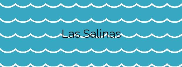 Información de la Playa Las Salinas en Roquetas de Mar