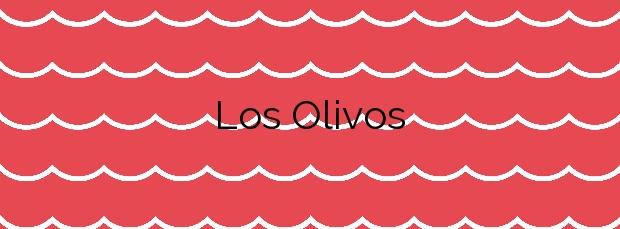 Información de la Playa Los Olivos en Cullera