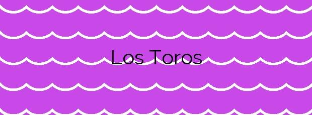 Información de la Playa Los Toros en Manilva