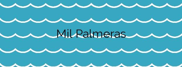 Información de la Playa Mil Palmeras en Pilar de la Horadada