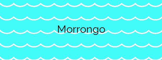 Información de la Playa Morrongo en Benicarló