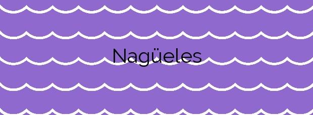 Información de la Playa Nagüeles en Marbella