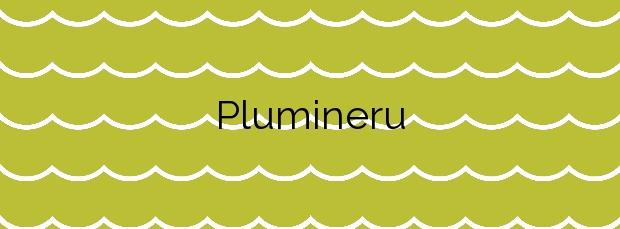 Información de la Playa Plumineru en Valdés