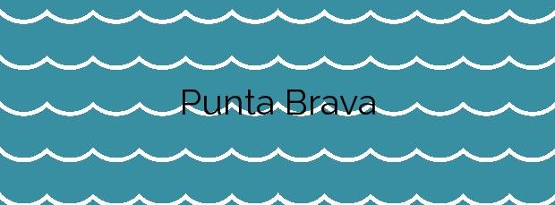 Información de la Playa Punta Brava en Puerto de la Cruz