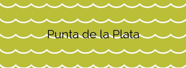Información de la Playa Punta de la Plata en Estepona