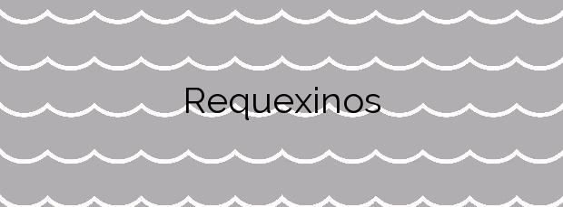 Información de la Playa Requexinos en Castrillón