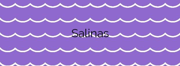 Información de la Playa Salinas en A Illa de Arousa