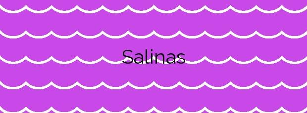 Información de la Playa Salinas en Castrillón