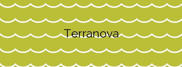 Información de la Playa Terranova en Oliva