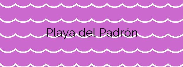 Información de la Playa del Padrón en Estepona