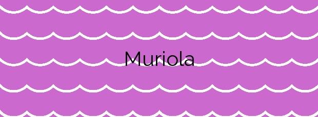 Información de la Playa Muriola  en Barrika